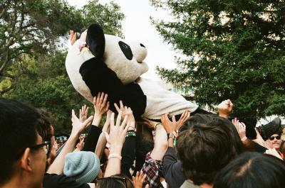 Panda // Kat Cone