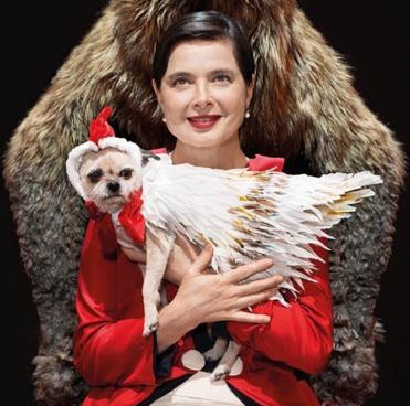 Picture of Isabella Rossellini
